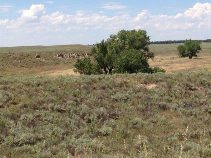 The Sand Creek Massacre National Historic Site